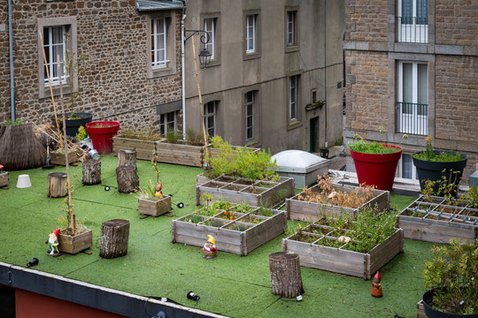 beautiful garden on the top of a roof in Saint Malo