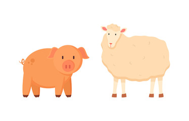 Fluffy sheep and porky pig vector, isolated domestic animals on farm, farming and breeding of mammals for agriculture, funny characters standing together