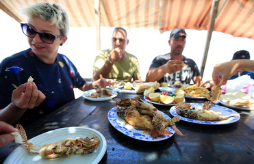 Jina Talj, an environmentalist, eats fried lionfish, a predatory venomous fish native to the nearby Red Sea and the Indo-Pacific, in Sarafand, Lebanon