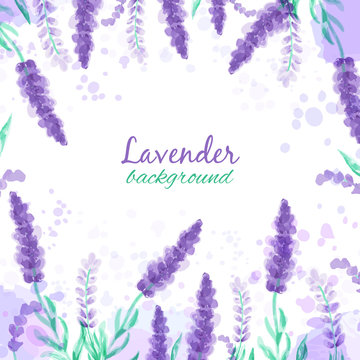 Lavender background with flowers. Watercolor imitation design with paint splashes Vector illustration Provence style. Drawing for greeting cards, invitations