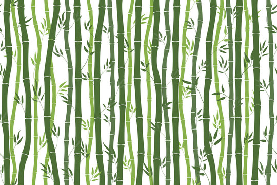 Seamless pattern with bamboo stalks. Silhouette of green bamboo on a white background. Bamboo sticks and leaves. Vector illustration for design work.