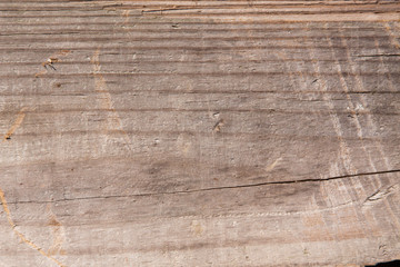 Wall Murals Wood old wood texture background