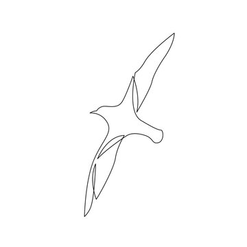 continuous line drawing of flying sea bird