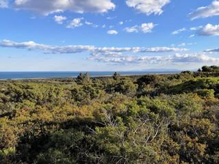 Panorama littoral méditerranéen près de gruissan, france