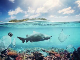 Plastic bags and bottles underwater in the ocean.