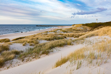 Grassy dunes and the Baltic sea