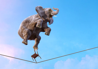 Elephant balancing on the tightrope high in the sky above clouds. Life balance, stability, concentration, risk, equilibrium concept over blue sky background. Surreal 3D illustration with copy space