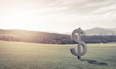 Money making and wealth concept presented by stone dollar symbol on green grass