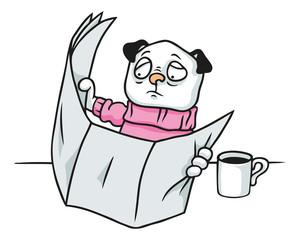 Mops Hund mit rosa Pullover beim Lesen einer Zeitung