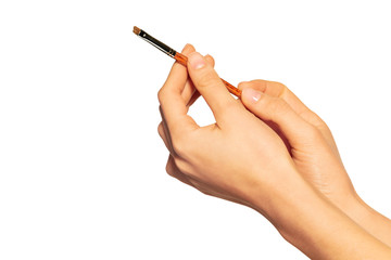 Female hands holding angled eyebrow brush on white