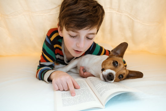 Happy boy in pajamas with his dog of breed Jack Russell are lying in bed under yellow blanket and reading emotionally a book. The child looks at the dog and reads a book, running a finger across. Pet