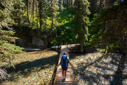 A female hiker walks across a suspension bridge over Cataract Creek  on the Grinell Lake Trail in the Many Glacier Area of Glacier National Park.