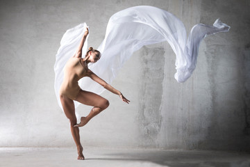 ballet dancer in the work, the dancer with a cloth, a girl with a beautiful body, elegantly girl,...