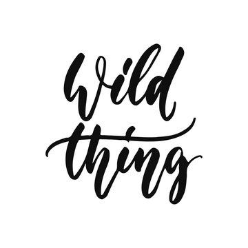 Wild thing - hand drawn positive inspirational lettering phrase isolated on the white background. Fun typography motivation brush ink vector quote for banners, greeting card, poster design.