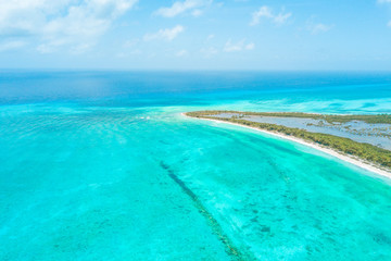 Wall Murals Green coral Beautiful aerial view of Cozumel Island in the Mexican Caribbean