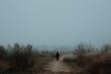 Rear view of woman in red dress walking on path