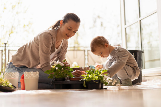 Mother and daughter planting flowers together on balcony
