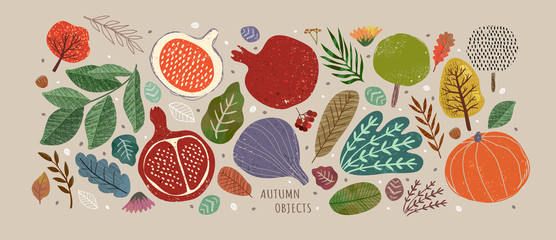 Vector illustrations of autumn objects: fruits and vegetables, harvest, trees, leaves, plants, pumpkin, pomegranates, figs and nuts. Cute freehand drawings to create a poster or card.