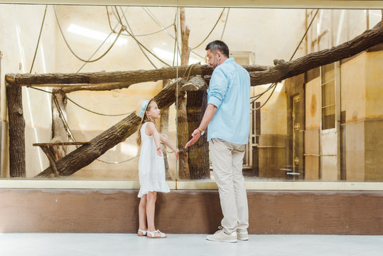 cute daughter looking at father and showing shrug gesture in zoo