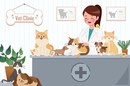 vet clinic concept