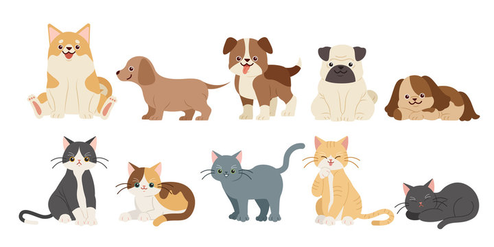 cute cartoon dogs and cats