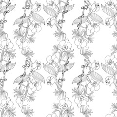 Seamless pattern with orchid flowers, nature floral background