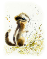 Chipmunk. Watercolor hand drawn illustration.