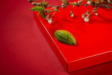 Green bonbons with cherry twigs
