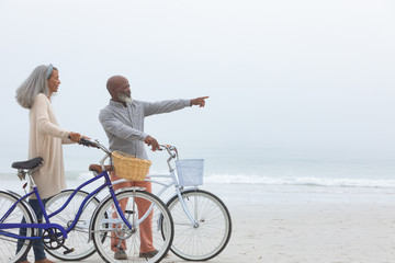 Couple holding bicycles by the beach