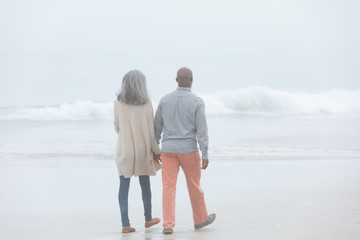 Couple holding hands while walking by the beach