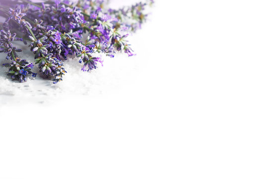 Spa massage setting with lavender flowers and cosmetic salt on white background, isolated. Close-up. Copy space. Flat lay, top view.