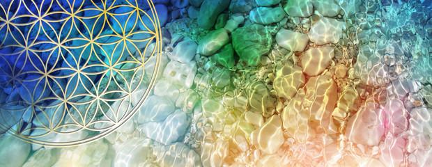 Banner Blume des Lebens im Fluss farbiger Lichtwellen in kristallklarem Wasser