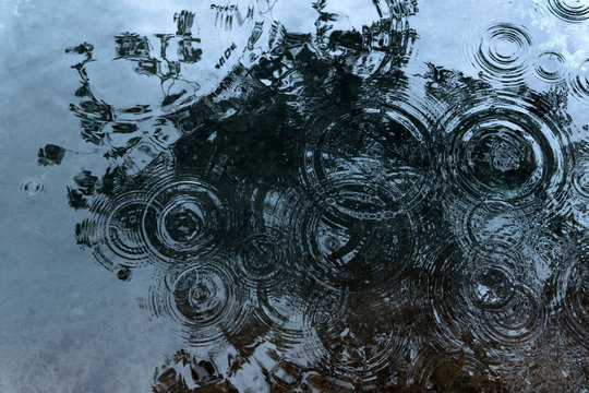 circles from raindrops on the surface of the pond