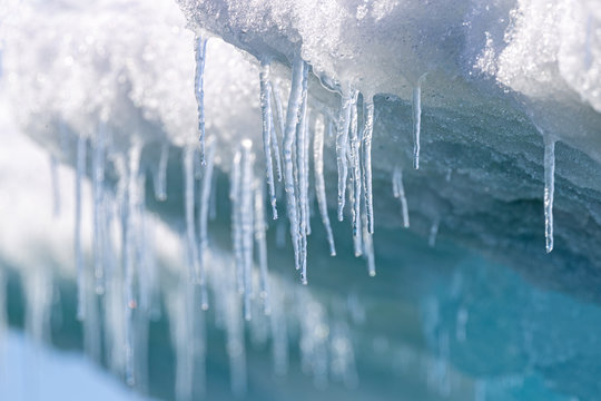 Icicles hanging from the base of the ice shelf in Svalbard