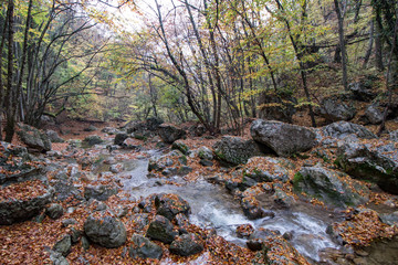 Beautiful cascade waterfall in autumn forest, silky smooth stream in the forest