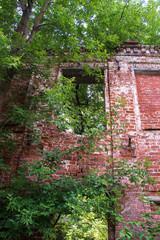 Ensemble of Yaroslavl Big manufactory of 18-19 century. Old building. The ruins of the almshouse and factory buildings among the thickets of trees