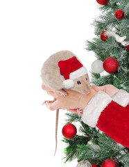 Santa presenting rat against Christmas tree