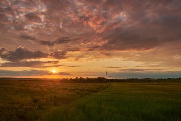 Rural Hertfordshire Sunset
