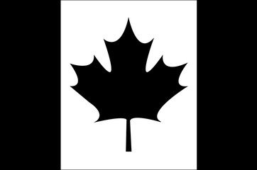 flag of canada patriotic icon