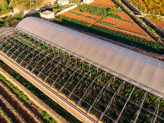 Greenhouses for planting heat-loving plants. Agriculture concept and farm. Aerial top view