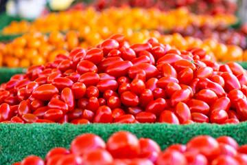 Tomaten - Markt - gemischt