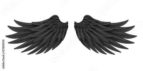 Black wings bird animal feather angel fly 3d realistic