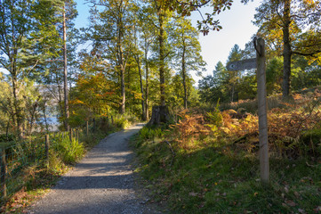 The path to Lodore
