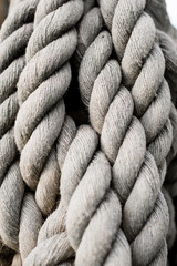 rope with knot texture  closeup