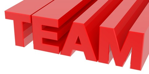 TEAM word on white background 3d rendering