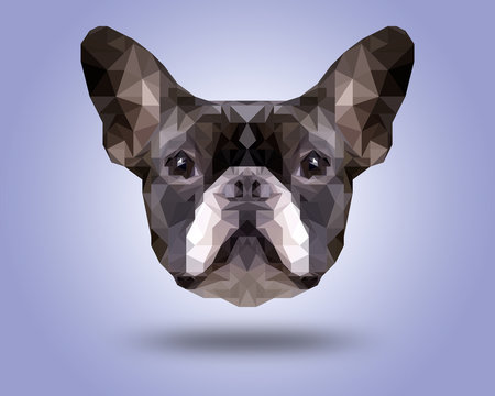 Symmetrical illustration of Boston terrier . Made in low poly triangular style.