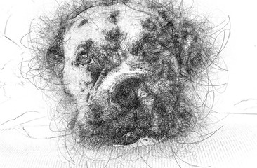 cute scribble dog face