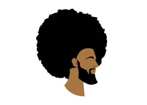 black man portrait with afro curly design, Barber shop and hairstyle. Healthy sporty young black man with beard, mustache and sideburns. Isolated avatar of raper on white background