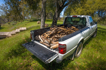 White pickup truck with firewood loaded in bed - Sierra Foothills