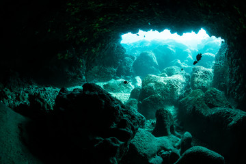 Wall Mural - Rays of light into the underwater cave